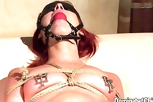 Submissive euro resultant property canned