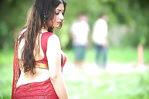 Sexy Bhabhi in Saree showing overcrowd - Episode 1